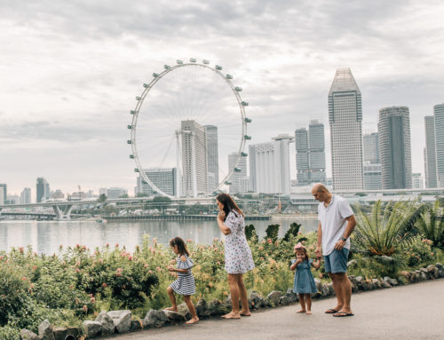 Family photoshoot in Gardens By The Bay East